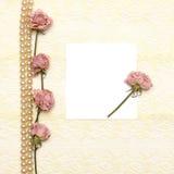 Fond avec le lacet, les perles et la fleur crèmes Image libre de droits