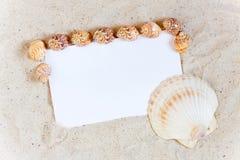 Fond avec le sable et coquillages autour d'un livre blanc vide Images stock