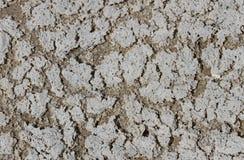 Fond avec le sable et le sel de plage Photographie stock libre de droits