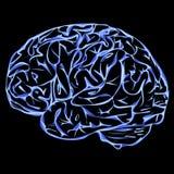 Fond avec le vecteur de bleu de concept de cerveau illustration stock