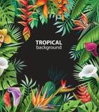 Fond avec les centrales tropicales illustration stock