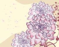 Fond avec les chrysanthemums décoratifs illustration stock