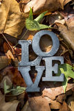 Fond avec les feuilles colorées d'automne Images libres de droits