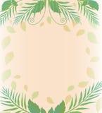 Fond avec les feuilles et la fougère Image libre de droits
