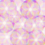 Fond avec les fleurs colorées translucides Images libres de droits