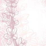 Fond avec les fleurs de cerise tirées par la main illustration libre de droits