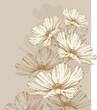 Fond avec les fleurs de floraison Photo libre de droits
