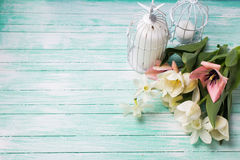 Fond avec les fleurs fraîches et les bougies Images libres de droits