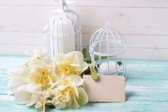 Fond avec les fleurs, l'étiquette et les bougies fraîches de ressort dans le decorat Photos stock