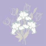 Fond avec les iris blancs Photographie stock libre de droits