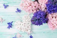 Fond avec les jacinthes de fleurs fraîches et le coeur décoratif Image stock