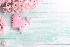 Fond avec les jacinthes et le rose décoratif h de fleurs fraîches Photo stock