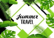 Fond avec les palmettes tropicales Plantes tropicales exotiques Illustration de nature de jungle Image stock