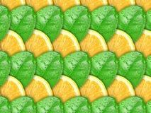 Fond avec les parts de citron et la lame verte Photos libres de droits