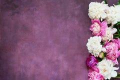 Fond avec les pivoines blanches et roses Configuration plate pour des invitations, félicitations Carte de voeux Copiez l'espace,  photos libres de droits