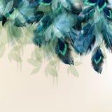 Fond avec les plumes réalistes bleues illustration libre de droits