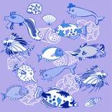 Fond avec les poissons et les coquilles de coque bleus Photographie stock libre de droits