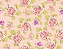 Fond avec les roses roses illustration stock