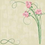 Fond avec les roses roses illustration de vecteur