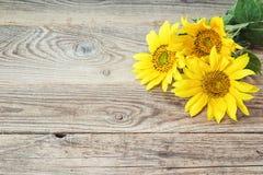 Fond avec les tournesols jaunes sur de vieux conseils en bois Images libres de droits