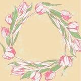 Fond avec les tulipes blanches roses Photos stock