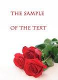 Fond avec trois roses Photos libres de droits