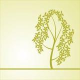 Fond avec un arbre Images libres de droits