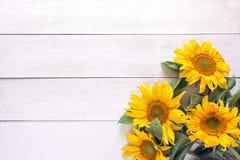 Fond avec un bouquet des tournesols jaunes sur le blanc peint photos stock