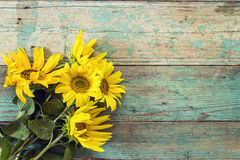 Fond avec un bouquet des tournesols sur le vieil esprit de conseils en bois Image libre de droits