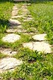 Fond avec un chemin des pierres dans l'herbe verte Photographie stock
