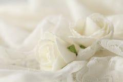 Fond beige de mariage avec des roses Image libre de droits