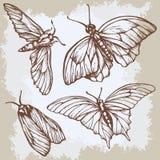 Fond beige de vintage avec des papillons illustration libre de droits