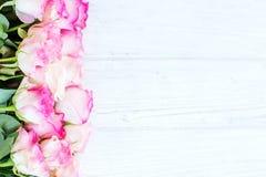 Fond blanc en bois avec les fleurs roses Un endroit pour le congratul Photographie stock libre de droits