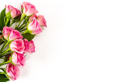 Fond blanc vide avec les fleurs roses Photos stock