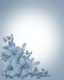 Fond bleu d'invitation de mariage de ketmie illustration stock