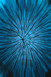 Fond bleu d'énergie Image stock