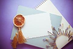 Fond bleu de cru Photographie stock