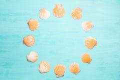 Fond bleu de mer avec l'espace de copie et le cadre rond faits en coquillages, vacances d'été et concept de vacances photographie stock libre de droits