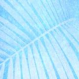 Fond bleu pour le livre de photo Photo libre de droits