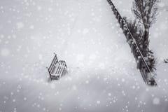 Fond blured par hiver Banc en parc Photographie stock