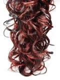 Fond bouclé de texture de cheveu de point culminant Photo stock