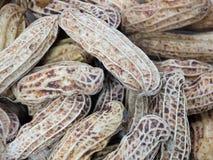 Fond bouilli de texture d'arachide, nourriture saine images stock