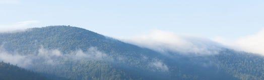 Fond brumeux de montagne, brouillard de for?t, paysage de brume photographie stock