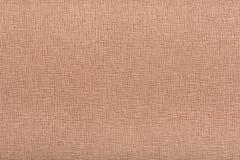 Fond brun clair de texture de cuir de relief de noisette Images libres de droits