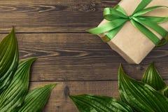 Fond brun en bois avec des feuilles de vert et un cadeau avec un gree Image stock