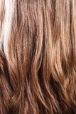 Fond brun naturel de plan rapproché de cheveux photos libres de droits