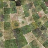 Fond carré abstrait Image stock