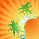 Fond chaud d'abrégé sur été de palmier Images libres de droits