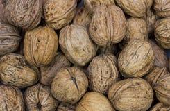 Texture de noix Photos libres de droits