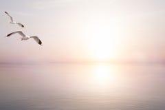 Fond clair abstrait d'été de mer d'art beau Photos stock